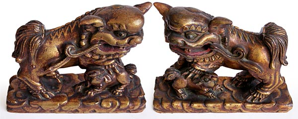 Gilt Wood Foo Dogs